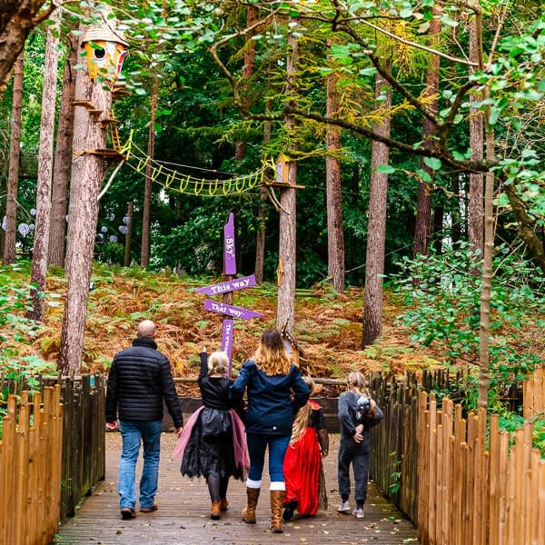 Bewilderwood treetop adventure park photography